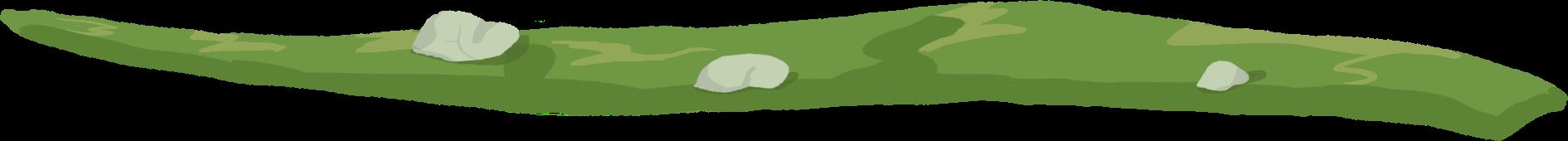 staza